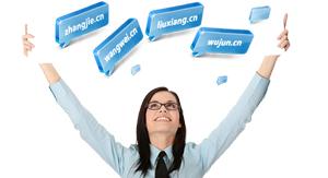 CN及中文国内域名注册规定和注册流程