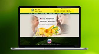 米仔(中国)官方网站