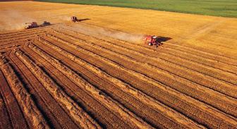 签约江苏省农业技术推广官网网页设计制作